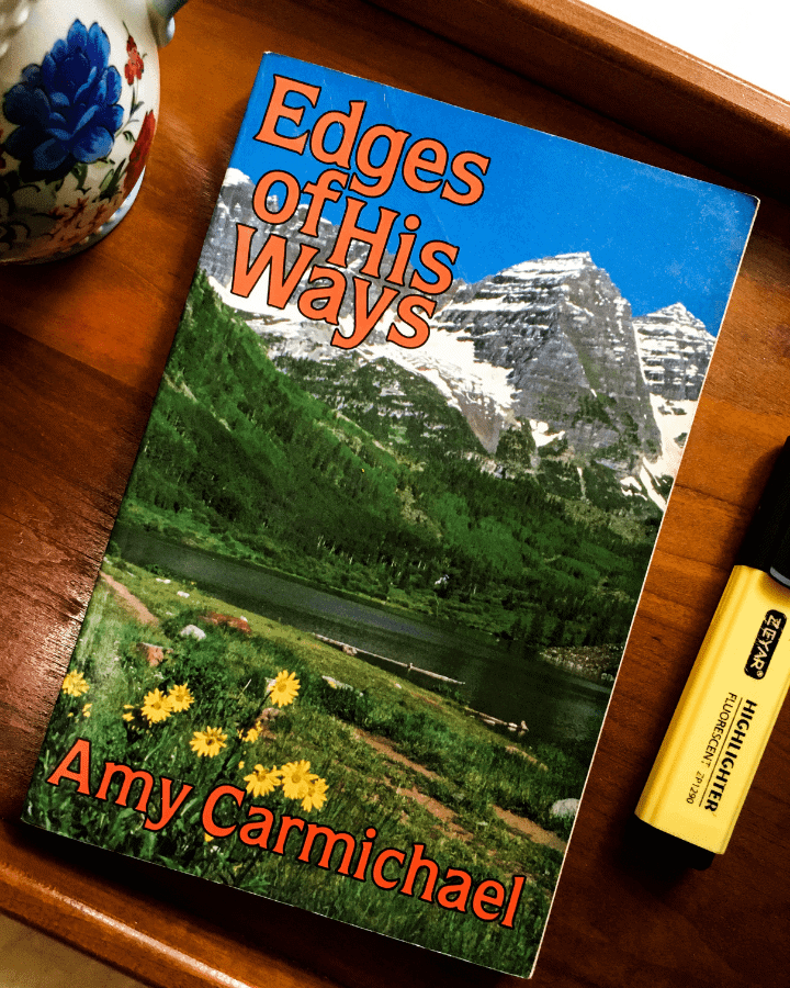 A book with mountains and flowers on the cover on a trey next to a mug and a highlighter.