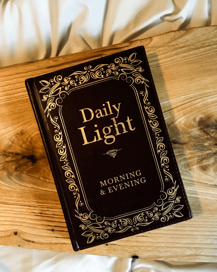 A book titled Daily Light on a piece of light colored wood.
