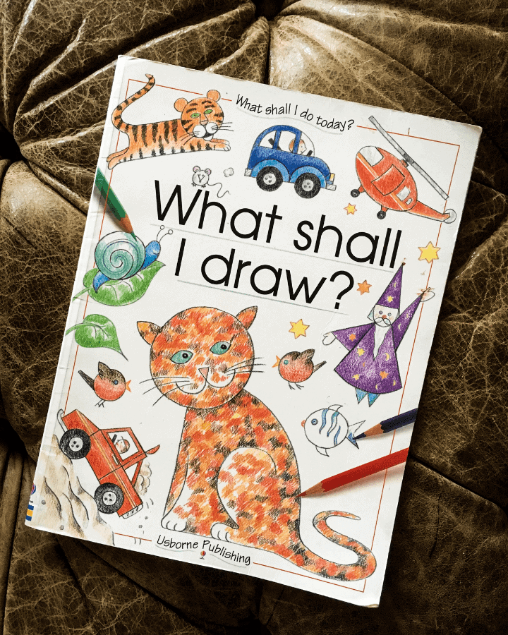 """A How to Draw Book for Kids titled """"What Shall I Draw?""""  It has a cat on the front."""
